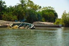 Zapadnięty czółno na Rzecznym Gambia Zdjęcie Stock