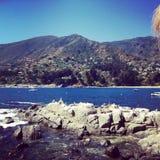Zapallar, ακτή της Χιλής στοκ εικόνες