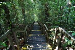 zaparkuj po schodach Zdjęcie Royalty Free