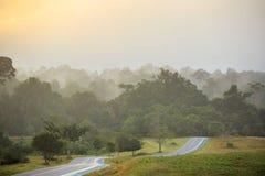 Zaparowywa wydźwignięcie W ranku nad lasem, drzewa, tak jak kraina cudów Zdjęcie Royalty Free