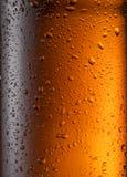 Zaparowywający szkło piwna butelka Zamyka w górę strzału obrazy stock