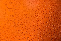zaparowywający szkło piwa zakończenie w górę pomarańczowego jaskrawego tła Zdjęcie Stock