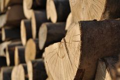 Zapasy drewno dla budowy Obrazy Royalty Free