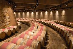 zapata för vingård för argentina catenamendoza Royaltyfria Bilder