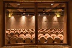 zapata för vingård för argentina catenamendoza Royaltyfri Foto