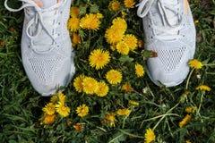 Zapatillas de deporte blancas en la hierba y los dientes de león Foto de archivo libre de regalías