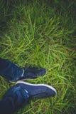 Zapatillas de deporte en hierba fotos de archivo
