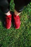 Zapatillas de deporte rojas en hierba Imágenes de archivo libres de regalías