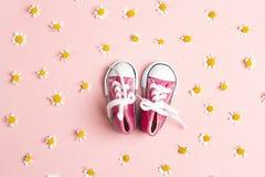 Zapatillas de deporte rosadas lindas del bebé con las flores de la margarita en un fondo rosado foto de archivo libre de regalías