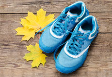 Zapatillas de deporte y hojas Fotos de archivo