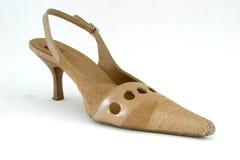 Zapato Imágenes de archivo libres de regalías