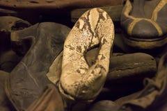 Zapato blanco de la piel de serpiente alguien matada en Auschwitz Foto de archivo libre de regalías