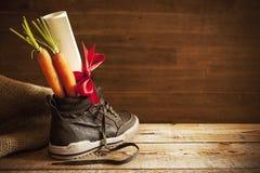 Zapato con las zanahorias, para el día de fiesta holandés 'Sinterklaas' Foto de archivo libre de regalías