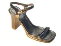Zapato de la mujer Imagenes de archivo