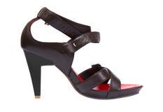 Zapato de la mujer fotografía de archivo