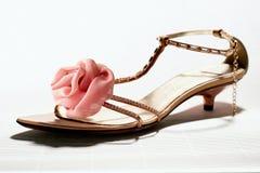 Zapato de las mujeres imagen de archivo libre de regalías