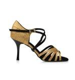 Zapato de las mujeres de moda Foto de archivo