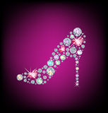 Zapato de las señoras Foto de archivo libre de regalías