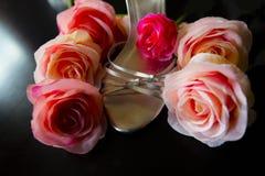 Zapato de plata con las rosas Fotos de archivo libres de regalías