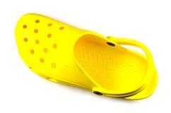 Zapato del agua Fotografía de archivo libre de regalías