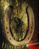 Zapato del caballo Fotografía de archivo