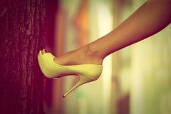 Zapato del tacón alto Foto de archivo