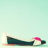 Zapato del talón del vintage Imagenes de archivo
