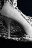 Zapato inclinado estilete Fotos de archivo