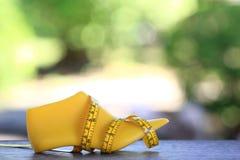 Zapato y cinta métrica pasados plásticos amarillos en fondo verde natural imagenes de archivo
