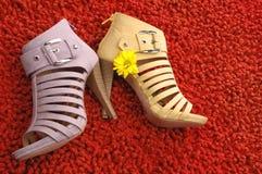 Zapatos Foto de archivo libre de regalías