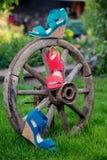 Zapatos brillantes, las sandalias de las mujeres, zapatos en el jardín Fotografía de archivo