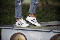 Zapatos de Adidas Superstar Fotografía de archivo
