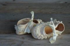 Zapatos de bebé infantiles con los volantes fotografía de archivo libre de regalías
