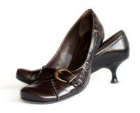 Zapatos de Brown con las hebillas Foto de archivo libre de regalías