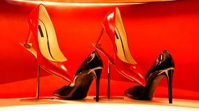 Zapatos de cuero de las señoras Fotografía de archivo