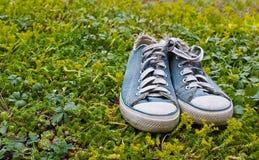 Zapatos de gimnasia azules en una hierba Imagen de archivo