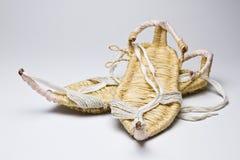 Zapatos de la hierba Imagen de archivo libre de regalías