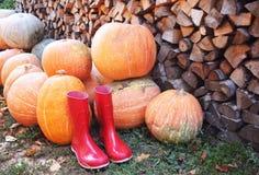 Zapatos de la lluvia de la calabaza de otoño y de madera rojos con el fondo de los leavs imágenes de archivo libres de regalías
