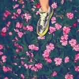 Zapatos de la manera imagen de archivo libre de regalías
