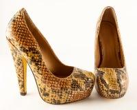 Zapatos de la moda de las señoras imagenes de archivo