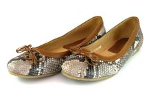 Zapatos de las mujeres Foto de archivo