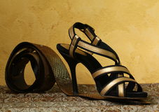 Zapatos de las mujeres con estilo de la manera imágenes de archivo libres de regalías