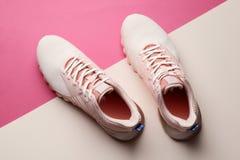 Zapatos de las mujeres en fondo del color fotos de archivo