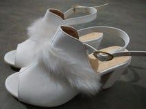Zapatos de las señoras fotos de archivo