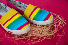 Zapatos de moda, brillantes, fáciles de los deportes (zapatos de gimnasio) Fotografía de archivo