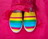 Zapatos de moda, brillantes, fáciles de los deportes (zapatos de gimnasio) Foto de archivo libre de regalías