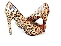 Zapatos del alto talón del leopardo Fotografía de archivo libre de regalías
