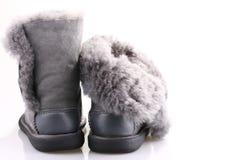 Zapatos del invierno Imagen de archivo libre de regalías