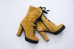 Zapatos del invierno Fotografía de archivo libre de regalías
