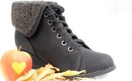 Zapatos del invierno, botas femeninas imagen de archivo libre de regalías